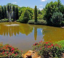 Ornamental Lake by Akrotiri