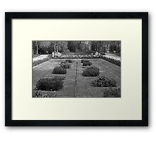Turo Park Framed Print