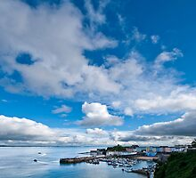 Tenby Harbour Pembrokeshire by Steve Purnell