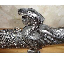 dragon sword Photographic Print