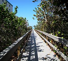 One of the way to the St.Pete beach by Irina777