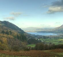 Views From The Whinlatter Forest by Jamie  Green