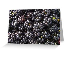 Blackberries. Greeting Card