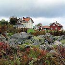 Swedish Farmhouse by HELUA