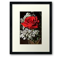 Red Rose for Love Framed Print