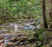Swift river by PhotosByHealy
