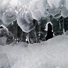Ice by Vasil Popov