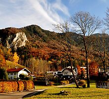 Hometown at Fall by Daidalos