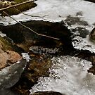 Frozen creek by Vasil Popov