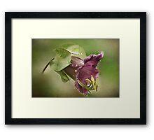 Bell Flower Framed Print