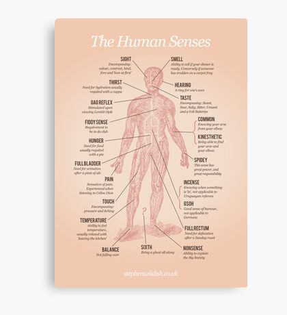 The Human Senses Canvas Print
