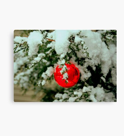 Little Red Ball Canvas Print