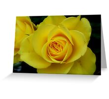 Yellow Mellow Greeting Card