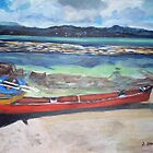 Canoe & Raft on Shell Island by Teresa Dominici