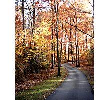 Dahlonega Fall Foliage Photographic Print