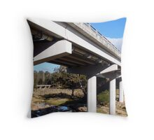 Frogs Hollow Throw Pillow