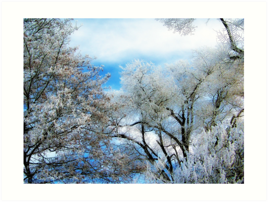 Frozen Trees 2 by rocamiadesign