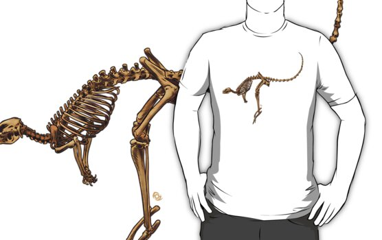 Kangaroo Skeleton by MrFoz