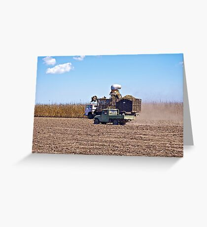 Farmer Checking the Harvest Greeting Card