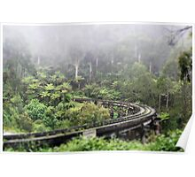Waiting for Puffing Billy on a misty morning Poster