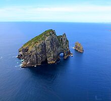 Bay of islands. North Island, New Zealand         by Martin  Brinsley
