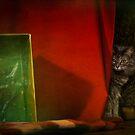 An Unfamiliar Box by Lynn Starner
