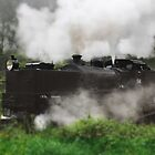 Puffing billy (black engine) up close and personal by mightymite