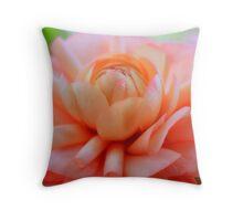 Luscious pinky peach ranunculi Throw Pillow