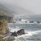 California Coast by MaryAnn Moore-Bock