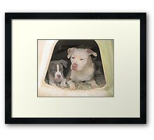 Hey!  We're Trying To Sleep! Framed Print