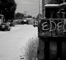 Eden by David Baird