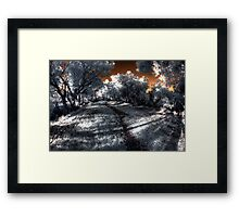 Evening walk along the Canning River Framed Print