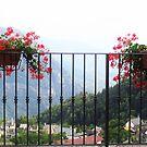 l'estate stà finendo.....fiori  by Guendalyn