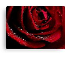 ONE ROSE Canvas Print