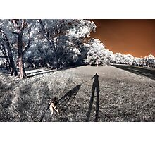 Dog taking me for an evening walk Photographic Print