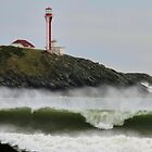 The Many Moods of the Cape Forchu Lighthouse by Debbie  Roberts