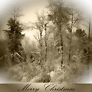 Wintry Merry Christmas by Ljartdesigns
