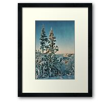 trees with a view Framed Print