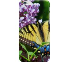 Eastern Tiger Swallowtail And Lilacs iPhone Case/Skin