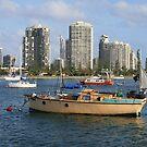 Gold Coast Broadwater by aussiebushstick