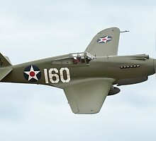 Curtiss P-40C Tomahawk at Omaka by Barry Culling