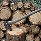 Wood Pile by aussiebushstick