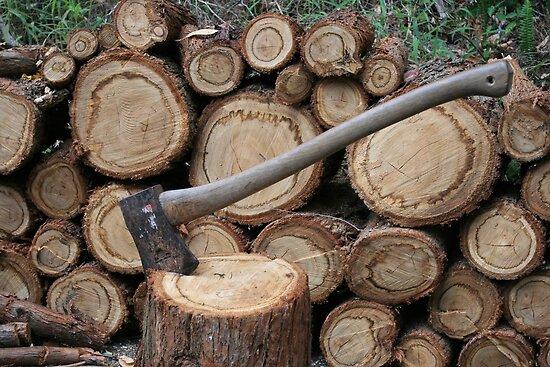 Wood Pile by aussiebushstick