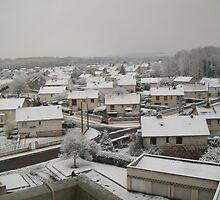 Winter in Migennes - nov 2010  by Caroline  SAUVAGEOT
