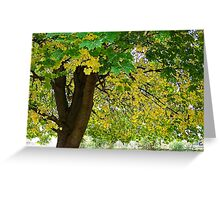 Yellow Autumn Greeting Card
