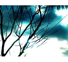 Blue shines through Photographic Print