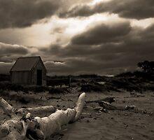 Lonely by Joe Asselin