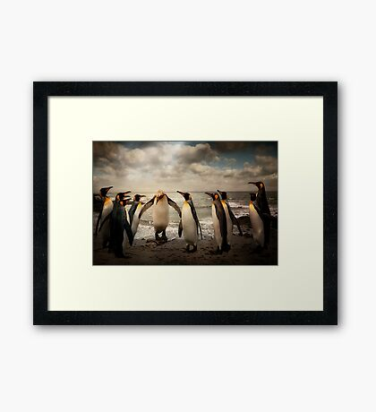 Penguins at the beach Framed Print