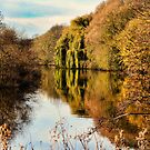 The River Aire in Autumn by Colin Metcalf