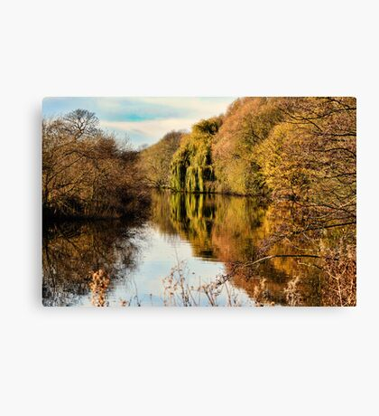 The River Aire in Autumn Canvas Print